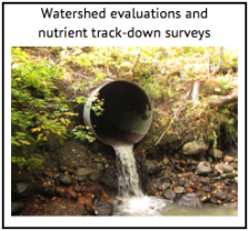 Watershed evaluations
